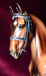 Sturdy bling bridle by Afuze