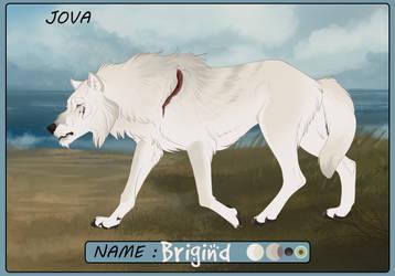 [WWF] Jova - Brigind - Taskless by Just-Joeying