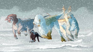 Through snow by Crium