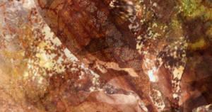 aestastis by willowleaf