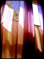 window 3- columns by willowleaf