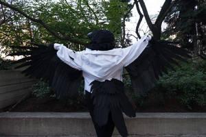 Prince Mytho Raven 01 by Sunnybrook1