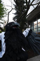 Prince Mytho Raven 04 by Sunnybrook1