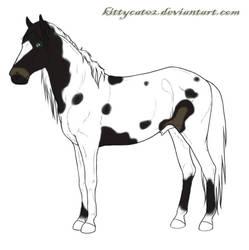 Prism (cheval) by Kimi-Fraisi