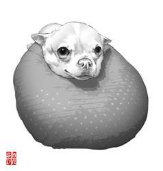 Coco... by Shun-008