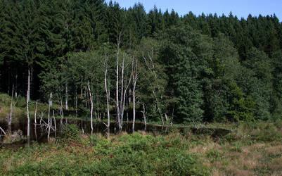 Beavers Valley - Wibrin by lsclayene