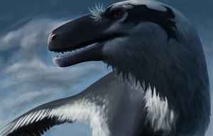 Saurian Dakotaraptor by TeraTheFeathernazi