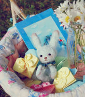 Blue Bunny Plush by ShadowedPorcelain