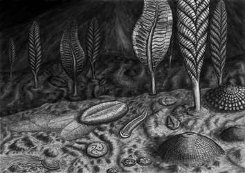 The Ediacaran biota by Typothorax