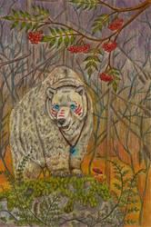 Karhu Kankahalla by ArcticNomad
