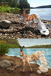 Azol Amath Comparison by ArcticNomad
