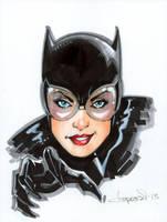 Catwoman by aaronlopresti