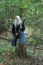 2016-06-19 A Wizard in Joseph's Wood by skiesofchaos