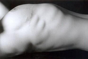 torso by leia856