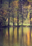 reflections by Orwald