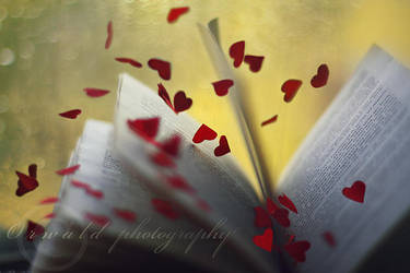 the book of Love by Orwald