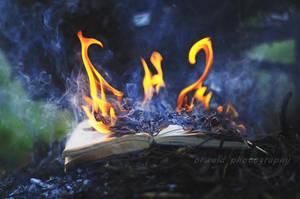 firebending book by Orwald