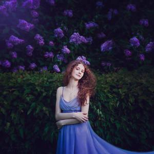 Lilac by Orwald