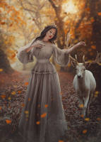 The lady of the forest by Neitin