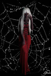 Little spider by Sylinde