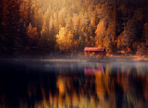 Autumn wonderland by streamweb