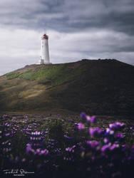 Reykjanes  lighthouse by streamweb