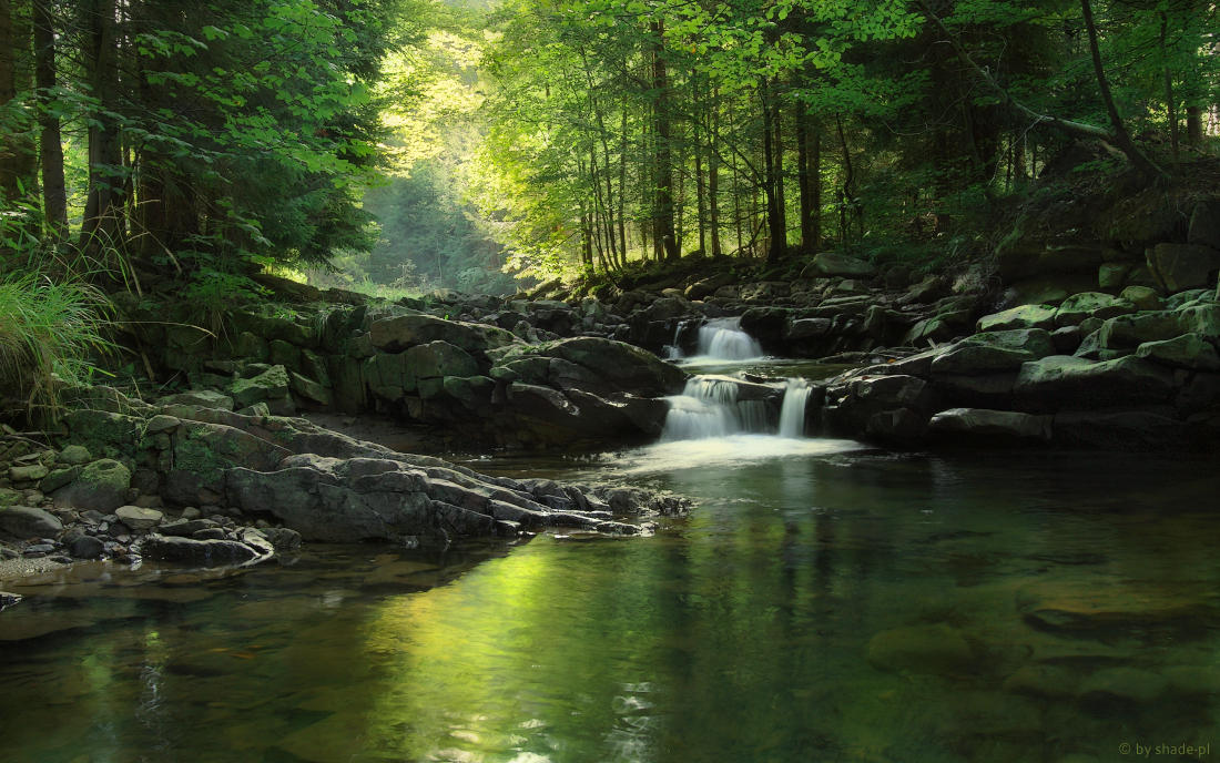 Green Stream by shade-pl
