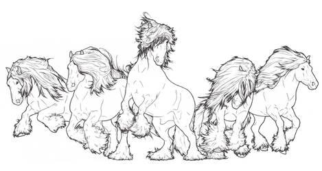 Gypsy Vanner Herd by ReQuay