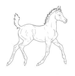Arabian Foal Lineart by ReQuay