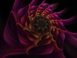 Spiral Flower 4 by johnnybg