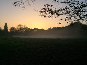 Hampstead Heath in the mist by kathrynthomas