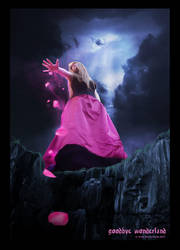 Goodbye Wonderland by Eireen