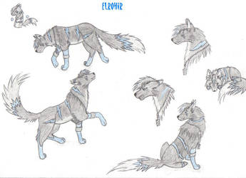 Fiche-Elrohir by Ladyemeraldas