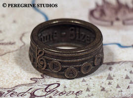 Zelda Songring - Song of Time by PeregrineStudios