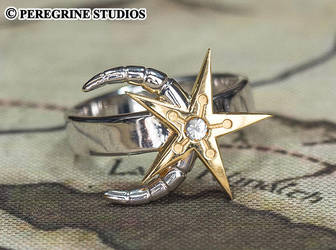 Moon-and-Star Ring (Plated Brass) by PeregrineStudios