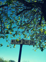 My Street by jam-tart