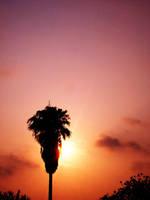 Good Morning, Sunshine by jam-tart