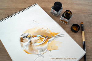 Sparrow by Vegeta3690