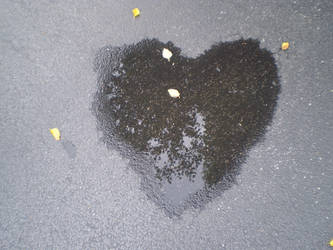 heart by smilexeveryxday
