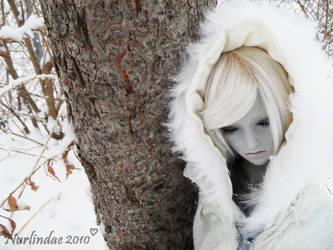 Arctic Empress by Nurlindae