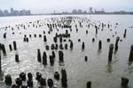 Boardwalk Graveyard by wafitz