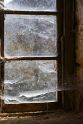Cobwebs by wafitz