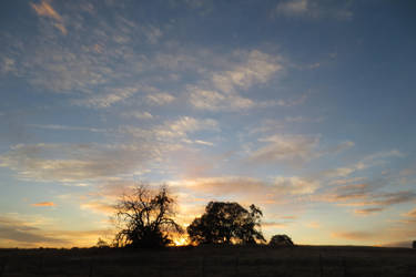 373 - California Sunset by absurdus