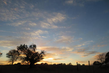 376 - California Sunset by absurdus