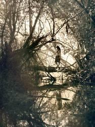 ormanda olum yokmus by yokhicolmadi