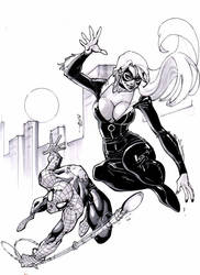 $50 spidey and black cat by Alex0wens