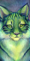 Green Cat by hibbary