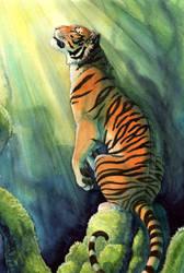 Bengal by hibbary