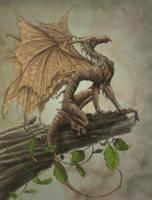 draco ramulus by hibbary