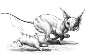 Pikachu and Raichu by hibbary
